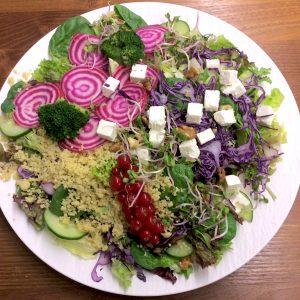 Vegetarische Low-Carb-Bowl. Glutenfrei und ohne Nüsse. Jetzt einfach online bestellen. Gourmetkultur Breuer liefert gesundes Mittagessen in ganz München.